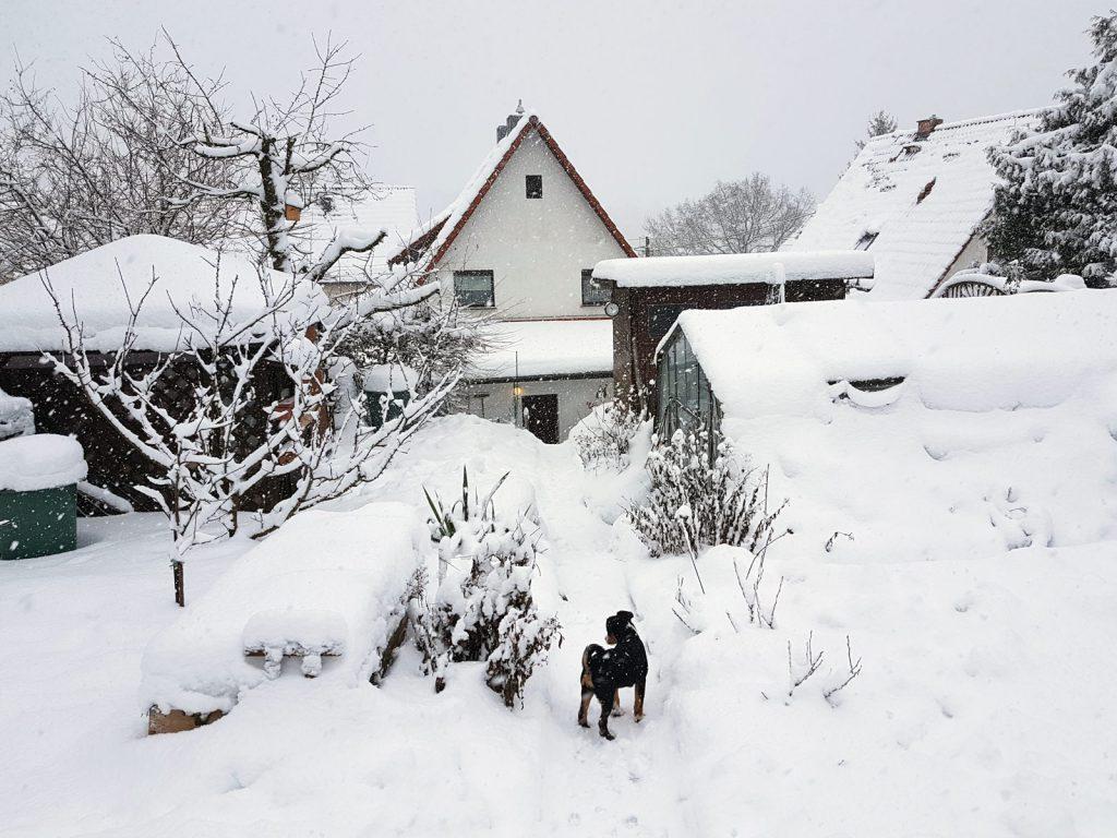 noch viel mehr Schnee