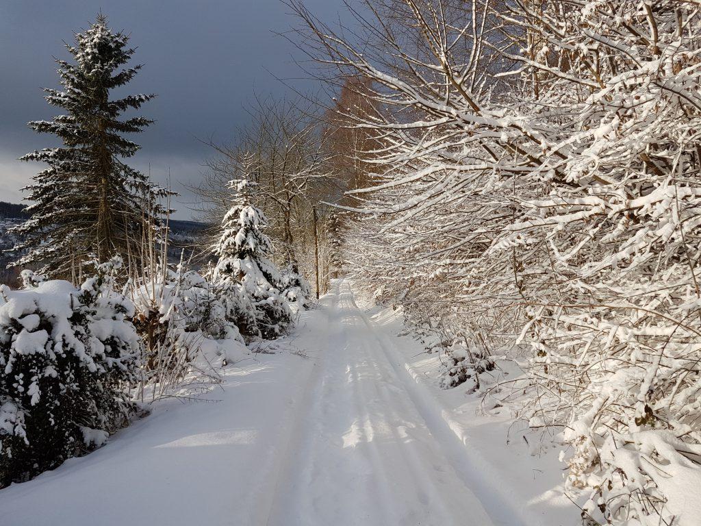 So macht der Winter Spaß